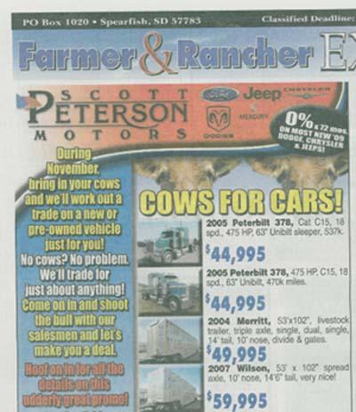 Cows4cars